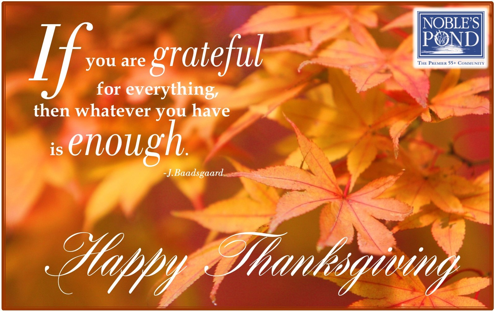 Thanksgiving wishes from Noble's Pond